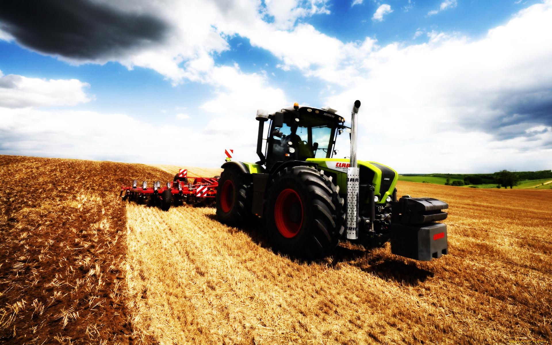 Трактор работает в поле картинка